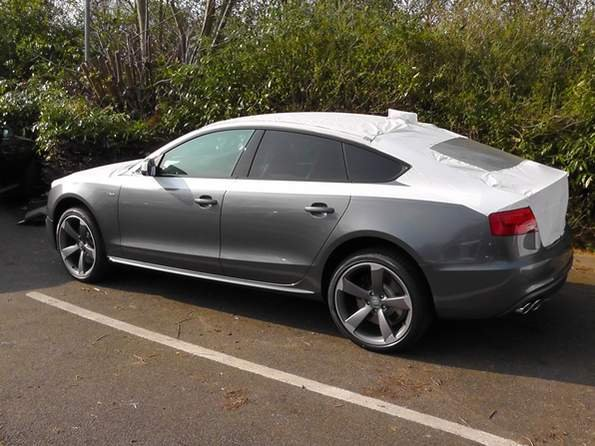 Dippy Albums Dippy S S Picture Predelivery on audi s5 sportback